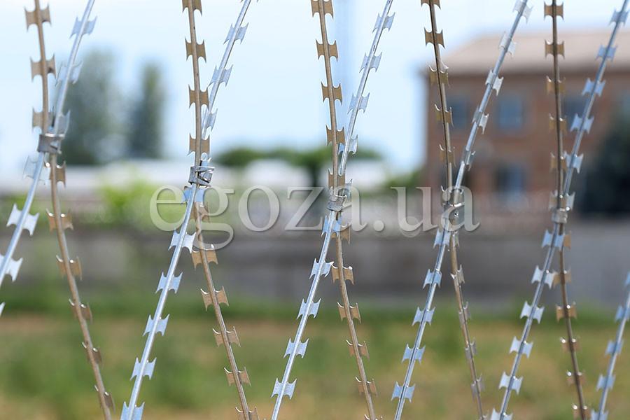 Barbed wire fence – Egoza razor mesh