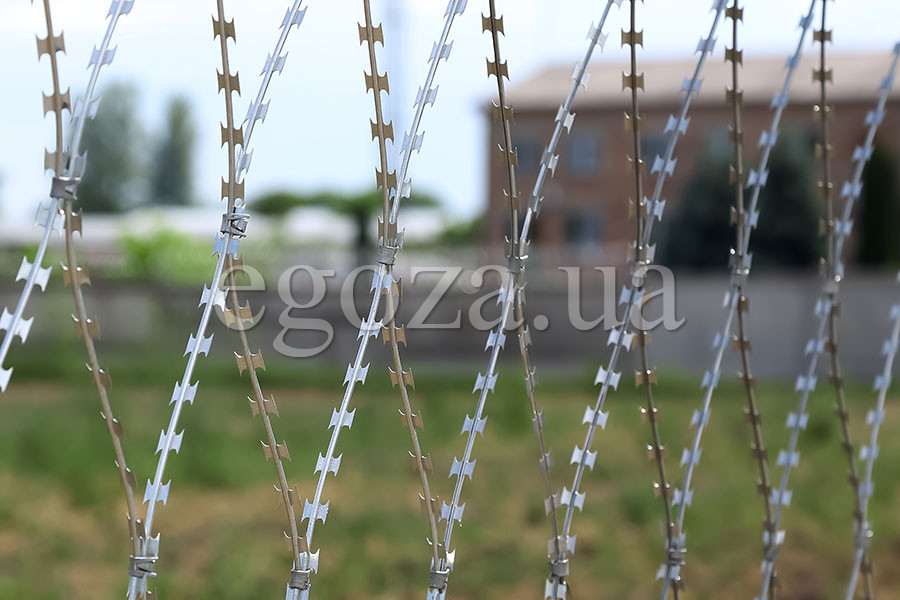 Razor mesh from Egoza barbed wire