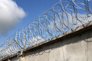 Двойной барьер Егоза на заборе из бетонных плит