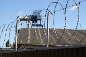 Плоский барьер 600 мм на заборе из сварной сетки