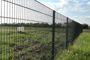 Welded panel fencing