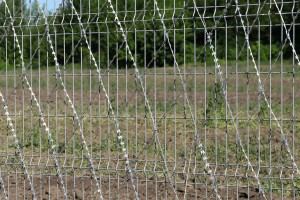 Egoza barbed mesh on a welded fence panel